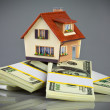 House on packs of banknotes - Foto Stock