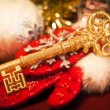 Royalty-Free Stock Photo: Gold key
