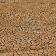 Dry and cracked earth - Stock Photo