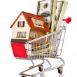 Shopping cart and house — Stock Photo #7500717
