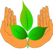 Of the hand green nature care about life — Stock Vector