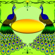 Two peacocks with message — Stock Photo