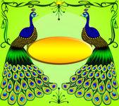 メッセージで 2 つの孔雀 — ストック写真