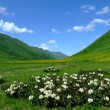 Stock Photo: Caucasus mountain