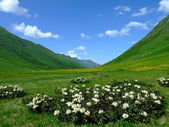 Caucasus mountain — Stock Photo
