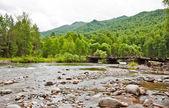 Rio de montanhas — Fotografia Stock