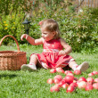 Stock Photo: Little girl collects the apples
