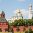 Royalty-Free Stock Photo: Moscow Kremlin Wall