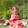 Little girl collects the apples — Stock Photo #7165491