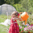 Little girl watering flower beds - Stock Photo
