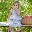 Little girl sits on a bench with a basket of apples — Stock Photo