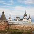 Stock Photo: Kind on Solovetsky monastery.
