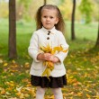 Beautiful little girl on walk in autumn park — Stock Photo #7375797