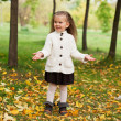 Beautiful little girl on walk in autumn park — Stock Photo #7509158