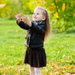 Beautiful little girl on walk in autumn park — Stock Photo #7509219