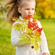 Beautiful little girl on walk in autumn park — Stock Photo #7629463