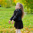 Beautiful little girl on walk in autumn park — Stock Photo #7629475