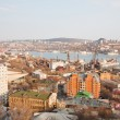 Kind to Vladivostok from the highest hill — Stock Photo #7629504