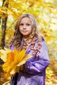 Beautiful little girl on walk in autumn park — Stock Photo
