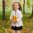 Beautiful little girl on walk in autumn park — Stock Photo #7947588