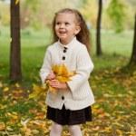 Beautiful little girl on walk in autumn park — Stock Photo #7947588