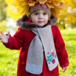 Beautiful little girl on walk in autumn park — Stock Photo #7947662