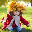 Beautiful little girl on walk in autumn park — Stock Photo #7947679