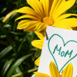 Happy Mothers Day — Stock Photo #6907642
