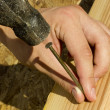 Hammering a Nail — Stock Photo