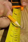 労働者の木の測定 — ストック写真