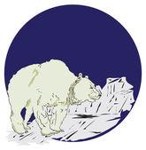 Isbjörn — Stockvektor