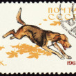Постер, плакат: Russian Hound on post stamp