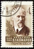 Russian academician Vladimir Komarov on post stamp — Stock Photo