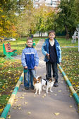 Two boys with dogs — Stock Photo