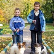 Two boys with dogs — Stock Photo #7307925