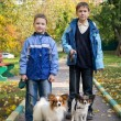 Stock Photo: Two boys with dogs