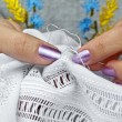 Stock Photo: Embroider