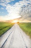 Road on greeen meadow — Stock Photo