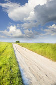 Road amongst green meadow — Stock Photo