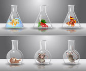 Laboratory flasks with different living organisms inside — Vecteur