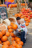 Family at the pumpkin patch — Stok fotoğraf