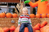 Toddler at the pumpkin patch — Stock Photo