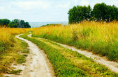 V polích — Stock fotografie