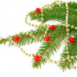 Decorated with fir branches — Stock Photo