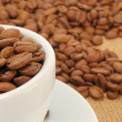 Stock Photo: Cup with coffee beans