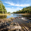 Carpenter Lake clear water vista — Stock Photo #6994769