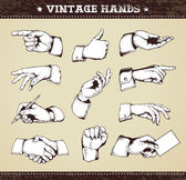 Set of vintage hands — Stock Vector