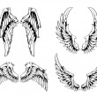Vector set of wings — Stock Vector
