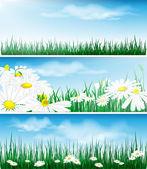 Herbe verte sur le ciel bleu. eps10 — Vecteur