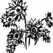 Vector de stock : Sunflowers